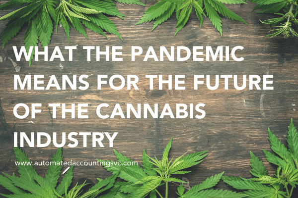What the Pandemic Means for the Future of the Cannabis Industry